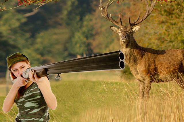Hunting License