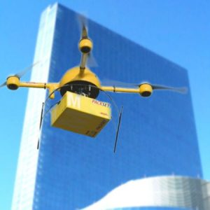 Drone Delivery Services