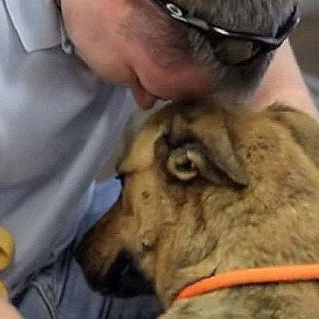 Man Reunites with His Dog
