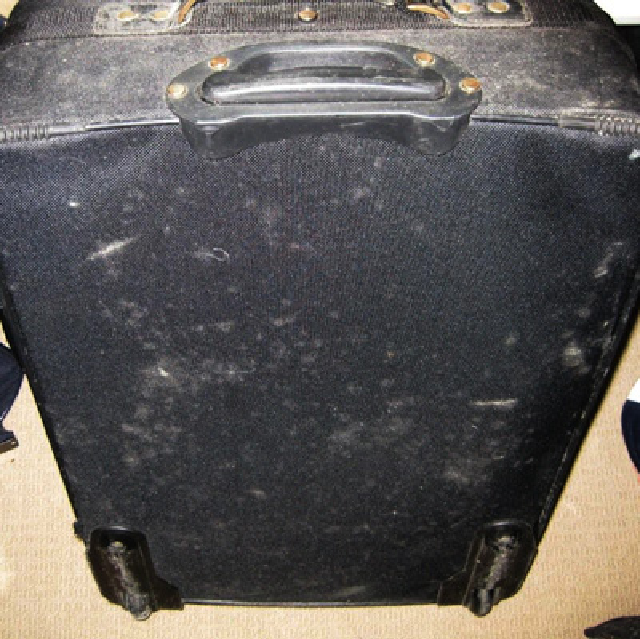 Rotting Luggage