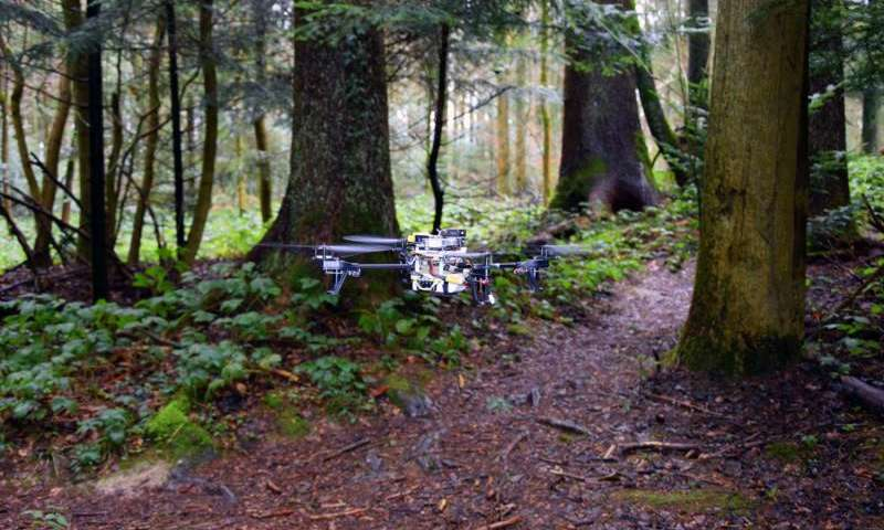 Drones Learn to Find Lost People