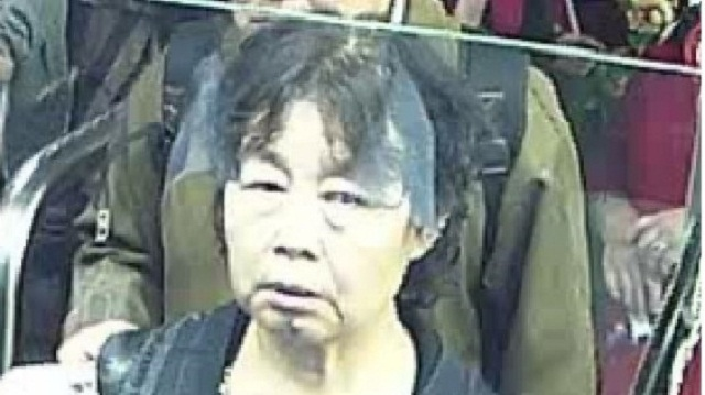 Missing Chinese Tourist