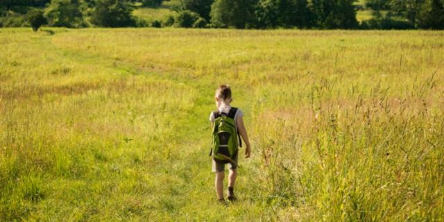 Wandering Kid