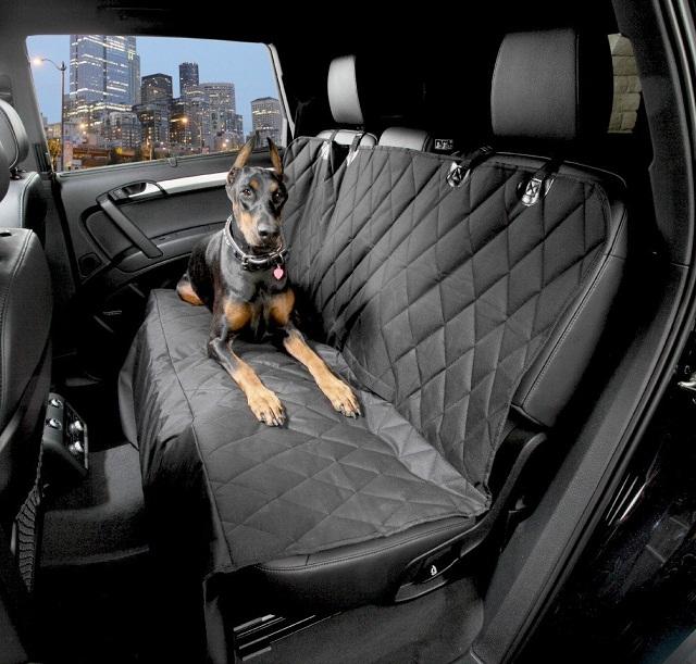 Pet Proof Car