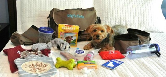 Pet's Travel Kit - Safe Pet Travel Practices