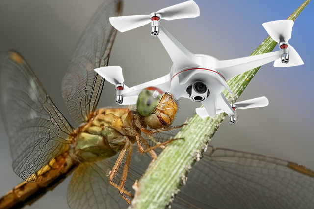 TRACKIMO-FI-drone-impact-to-wildlife