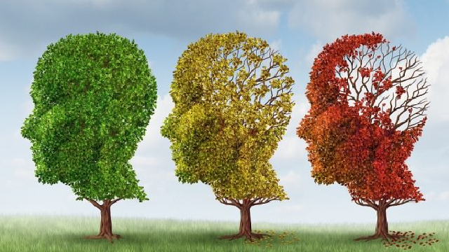 Alzheimer's Stages