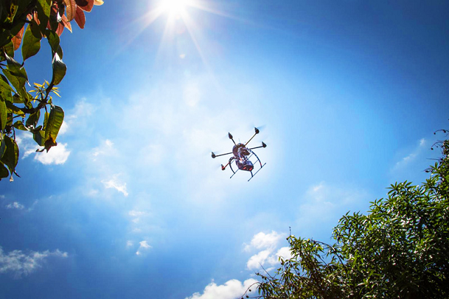 Using GPS Drones for Tree Planting Now Feasible - Trackimo