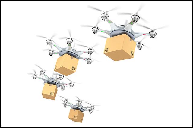 Drone Delivery Program
