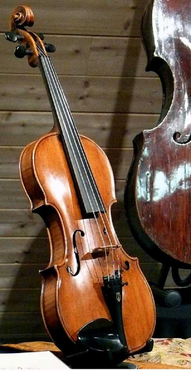 Violin Testore