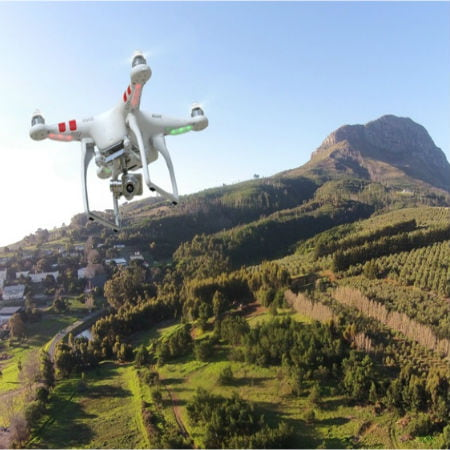 Drones Roaming Freely