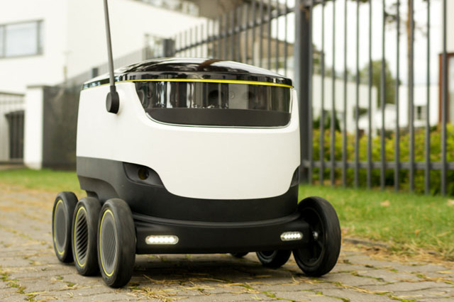 Self-Driving Delivery Bot