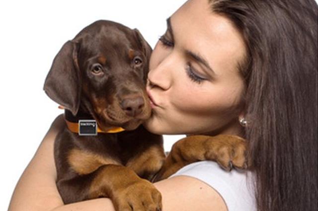 Trackimo for Dogs