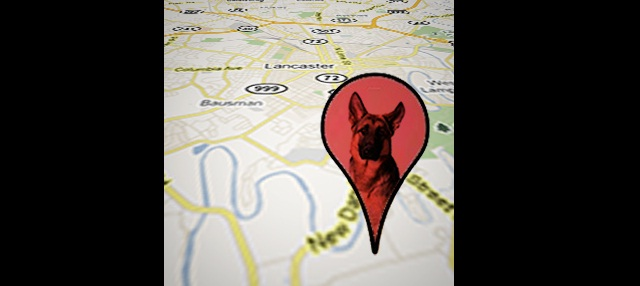 Pet Trackers