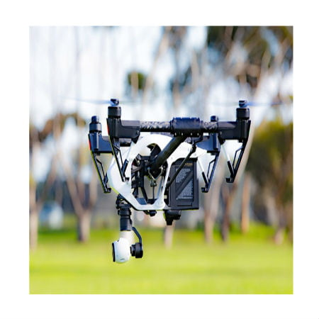 Drones for Wildlife Research