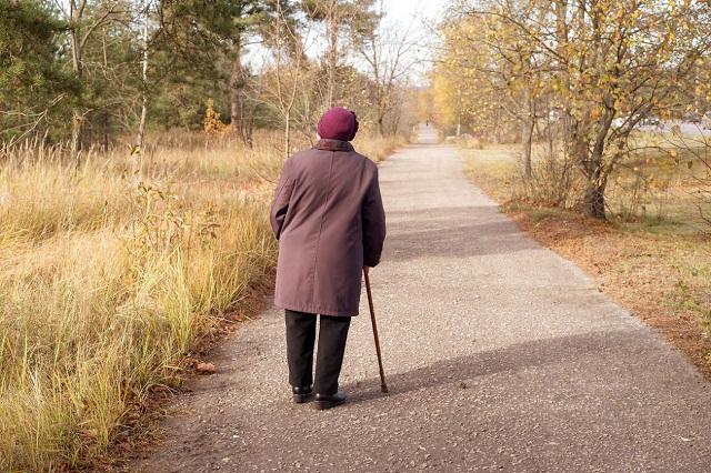 Wandering Seniors
