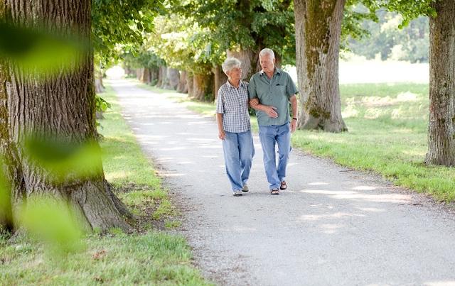 Seniors' Safety