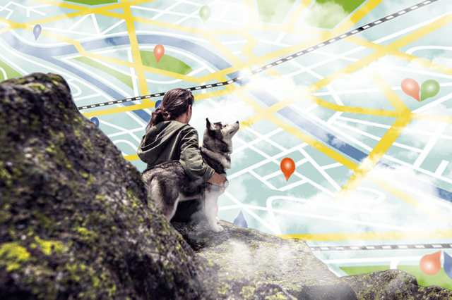 GPS Tracking for Dog Walkers