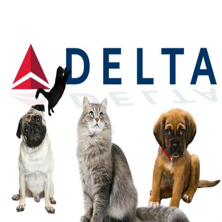 GPS Tracking for Airline Pet Service