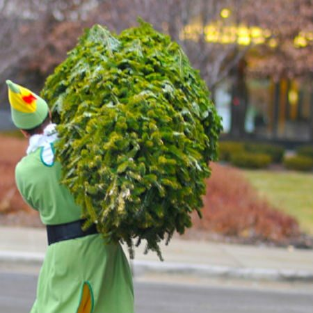 Person Dressed as an Elf Carrying Pine Tree