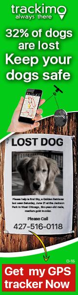 Dog banner 160 x 600 (D-15)