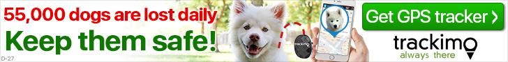 Dog banner 728 x 90 (D-27)