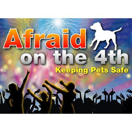 Pets Afraid on the 4th