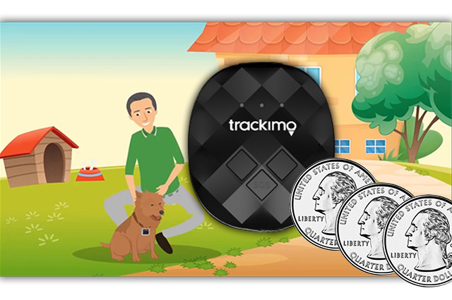 Cost of Pet GPS Tracker