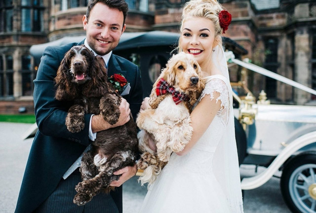 Pet Safe During Wedding
