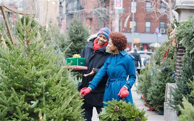 8-christmas-tree-e_2755114b